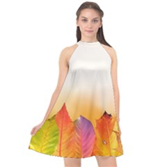 Autumn Leaves Colorful Fall Foliage Halter Neckline Chiffon Dress  by Nexatart