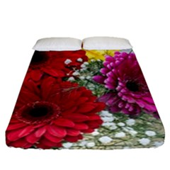 Flowers Gerbera Floral Spring Fitted Sheet (queen Size) by Nexatart