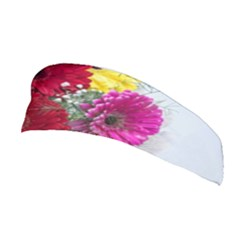 Flowers Gerbera Floral Spring Stretchable Headband by Nexatart
