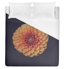 Art Beautiful Bloom Blossom Bright Duvet Cover (queen Size) by Nexatart