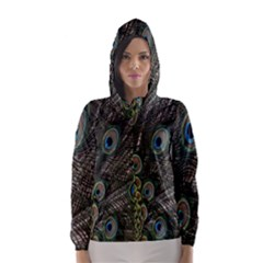 Close Up Of Peacock Feathers Hooded Wind Breaker (women)