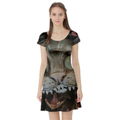 Cheshire Cat Short Sleeve Skater Dress