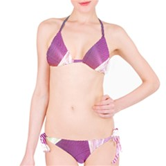 Light Means Net Pink Rainbow Waves Wave Chevron Bikini Set by Mariart