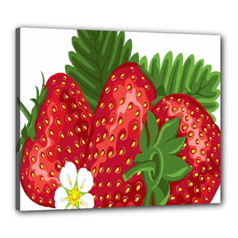 Strawberry Red Seed Leaf Green Canvas 24  X 20  by Mariart