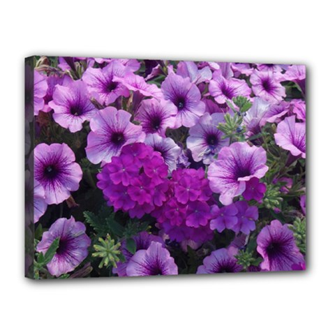 Wonderful Lilac Flower Mix Canvas 16  X 12