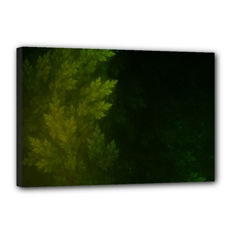 Beautiful Fractal Pines In The Misty Spring Night Canvas 18  X 12  by jayaprime