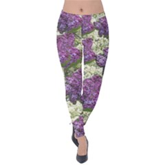 Purple And White Flowers Velvet Leggings by SusanFranzblau