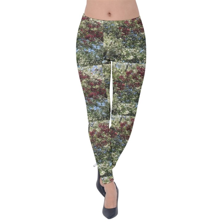 Red and White Flowering Trees Velvet Leggings