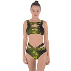 Beautiful Emerald Fairy Ferns In A Fractal Forest Bandaged Up Bikini Set