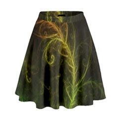 Fractal Hybrid Of Guzmania Tuti Fruitti And Ferns High Waist Skirt by jayaprime