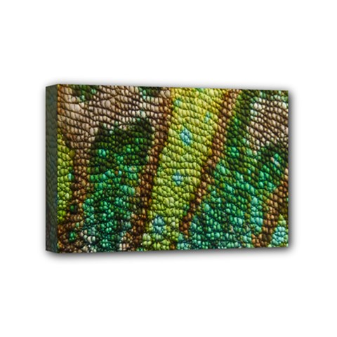 Chameleon Skin Texture Mini Canvas 6  X 4  by BangZart