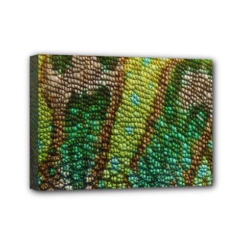 Chameleon Skin Texture Mini Canvas 7  X 5  by BangZart