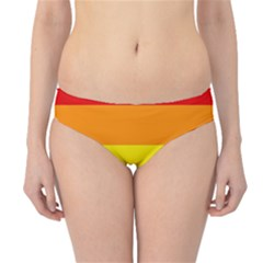 Pride Rainbow Flag Hipster Bikini Bottoms by Valentinaart