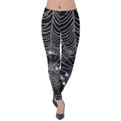 Spider Web Wallpaper 14 Velvet Leggings
