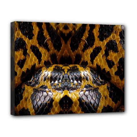Textures Snake Skin Patterns Canvas 14  X 11  by BangZart