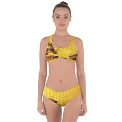 Sweden Honey Criss Cross Bikini Set by BangZart