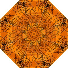 Vector Seamless Pattern With Spider Web On Orange Golf Umbrellas by BangZart