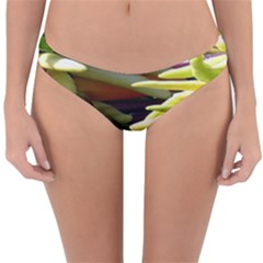 Bright Peppers Reversible Hipster Bikini Bottoms