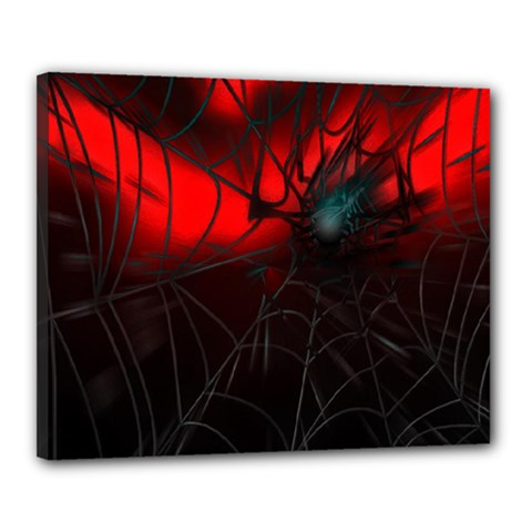 Spider Webs Canvas 20  X 16  by BangZart