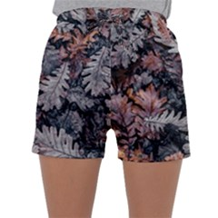Leaf Leaves Autumn Fall Brown Sleepwear Shorts