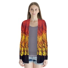 Sunset Abendstimmung Drape Collar Cardigan by BangZart