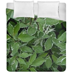 Texture Leaves Light Sun Green Duvet Cover Double Side (california King Size) by BangZart
