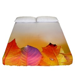 Autumn Leaves Colorful Fall Foliage Fitted Sheet (queen Size) by BangZart