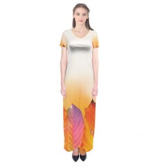 Autumn Leaves Colorful Fall Foliage Short Sleeve Maxi Dress by BangZart