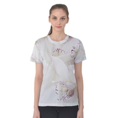 Orchids Flowers White Background Women s Cotton Tee by BangZart