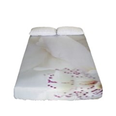 Orchids Flowers White Background Fitted Sheet (full/ Double Size) by BangZart