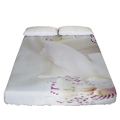 Orchids Flowers White Background Fitted Sheet (queen Size) by BangZart