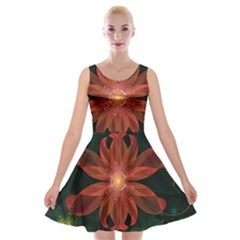 Beautiful Red Passion Flower In A Fractal Jungle Velvet Skater Dress by jayaprime