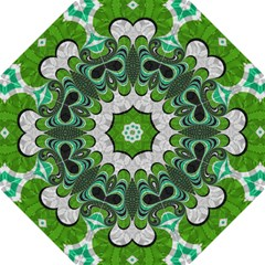 Fractal Art Green Pattern Design Hook Handle Umbrellas (large) by BangZart