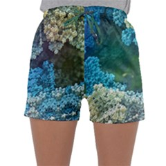 Fractal Formula Abstract Backdrop Sleepwear Shorts