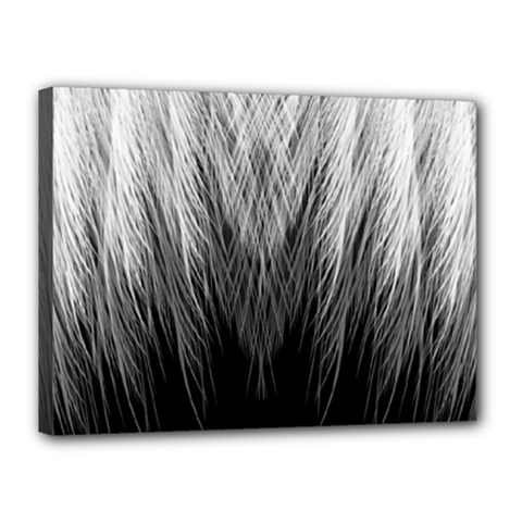 Feather Graphic Design Background Canvas 16  X 12  by BangZart