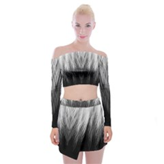 Feather Graphic Design Background Off Shoulder Top With Skirt Set