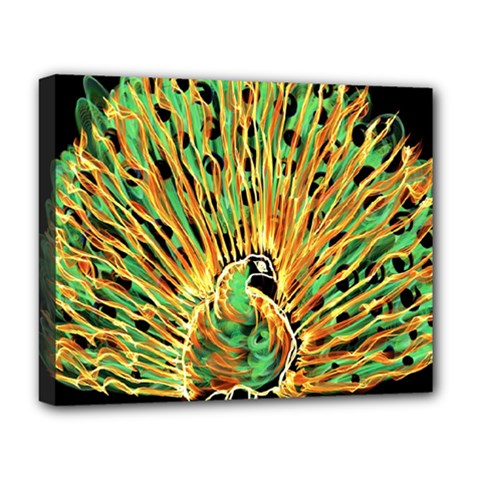 Unusual Peacock Drawn With Flame Lines Deluxe Canvas 20  X 16   by BangZart