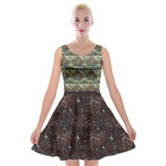 *a Tree With Leaves To Repeat Velvet Skater Dress