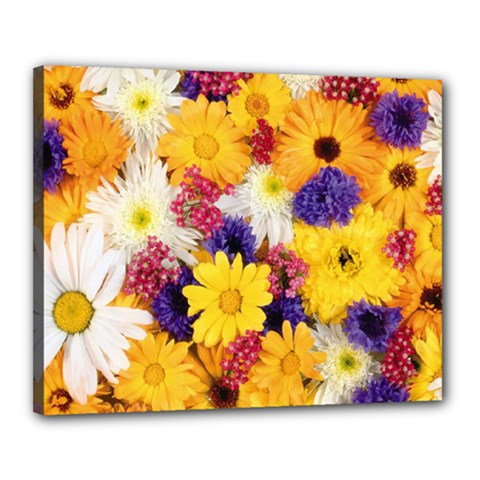 Colorful Flowers Pattern Canvas 20  X 16  by BangZart