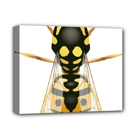 Wasp Deluxe Canvas 14  X 11  by BangZart