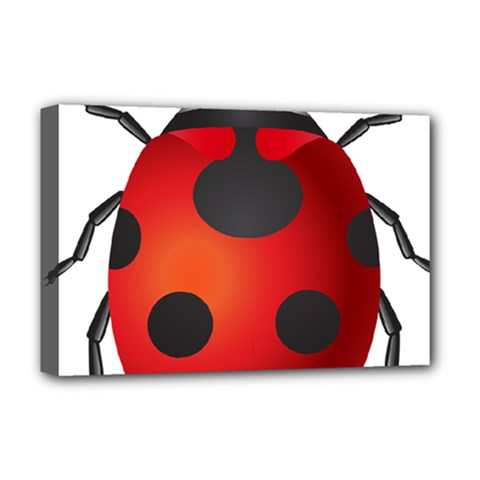 Ladybug Insects Deluxe Canvas 18  X 12   by BangZart