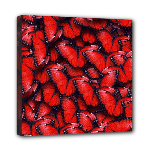 The Red Butterflies Sticking Together In The Nature Mini Canvas 8  X 8