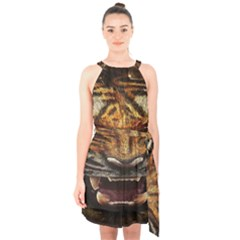 Tiger Face Halter Collar Waist Tie Chiffon Dress