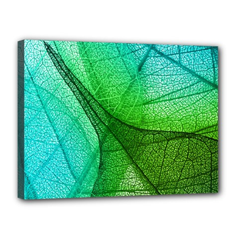 Sunlight Filtering Through Transparent Leaves Green Blue Canvas 16  X 12  by BangZart