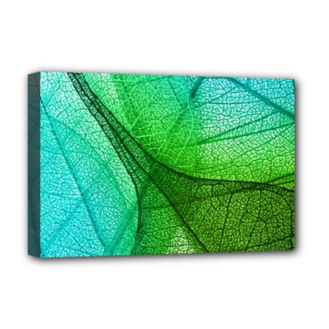 Sunlight Filtering Through Transparent Leaves Green Blue Deluxe Canvas 18  X 12