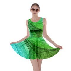 Sunlight Filtering Through Transparent Leaves Green Blue Skater Dress by BangZart