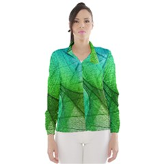 Sunlight Filtering Through Transparent Leaves Green Blue Wind Breaker (women) by BangZart
