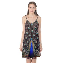 Peacock Camis Nightgown