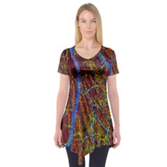 Neurobiology Short Sleeve Tunic