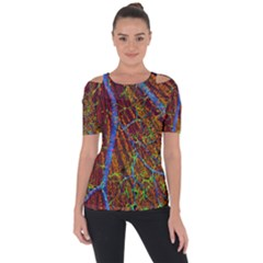Neurobiology Short Sleeve Top